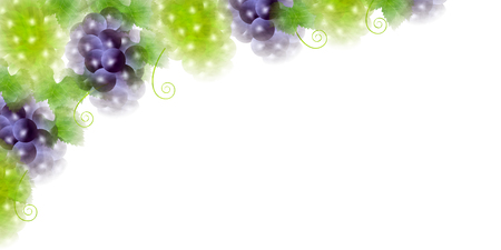 red grape: Grape fruit autumn background