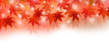 Autumn leaves autumn landscape background