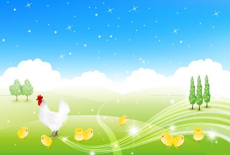 pollitos: Gallo fondo tarjeta de felicitación de pollo