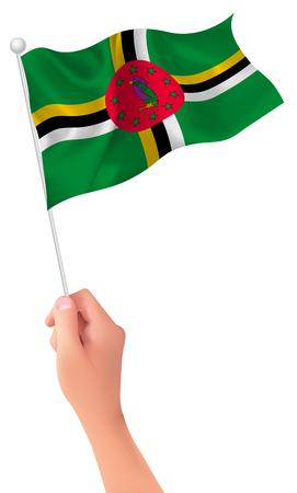 Dominica flag hand icon