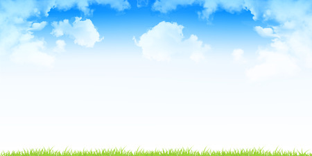 sky and grass: Sky grass landscape background