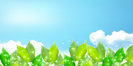 Fresh green natural scenery background