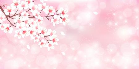 Cherry spring flower background Ilustrace