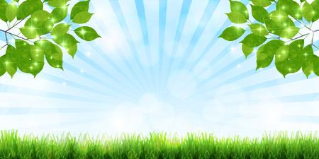 Fresh green leaf green background