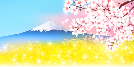 rape: Cherry blossoms Fuji Spring background Illustration