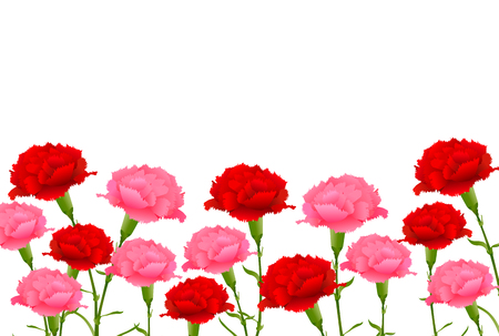 Mothers Day Carnation Spring background