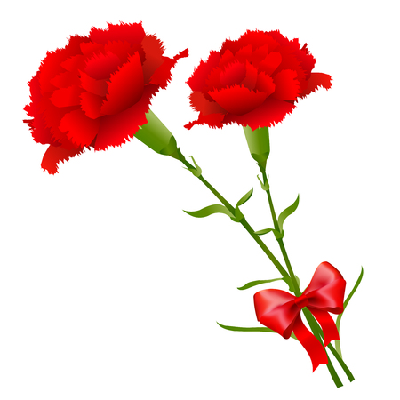 Mothers Day Carnation Spring Icon