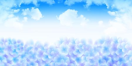 Hydrangea rainy season flower background