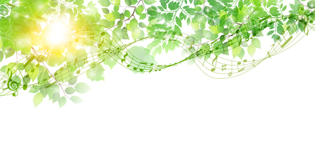 Fresh green leaves Spring background