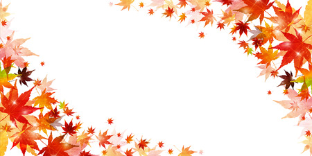 Autumn leaves maple leaf background