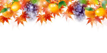 Maple autumn leaf background