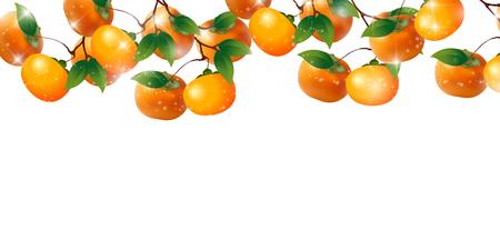Persimmon fruit autumn background