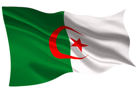 Algeria national flag flag icon
