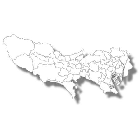 Tokyo Map White Icon