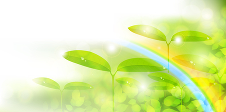 Fresh green eco leaf background