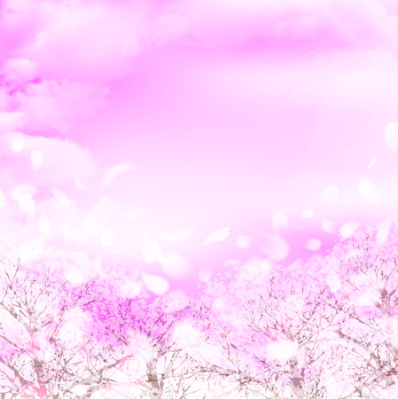 Cherry Blossoms spring flower background Stock Illustratie