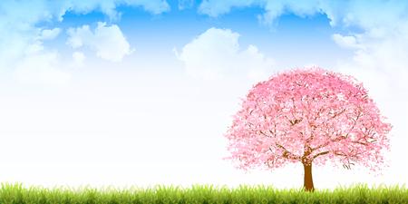 桜春花背景イラスト。  イラスト・ベクター素材