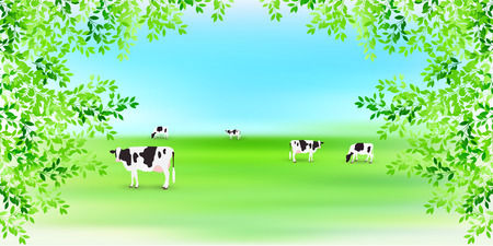 Cow ranch landscape background