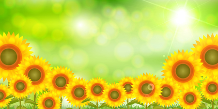 Sunflower scenery on a green background  イラスト・ベクター素材