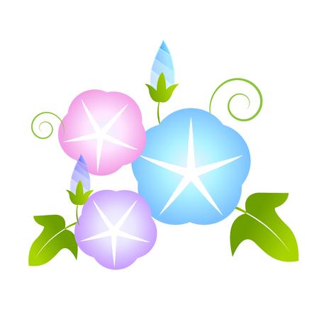 Morning glory summer flower icon illustration.