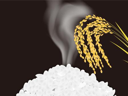 Rice grain rice background