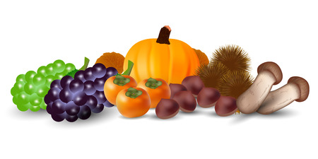 Autumn taste pumpkin grape icon