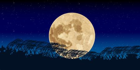 The night sky background night sky background
