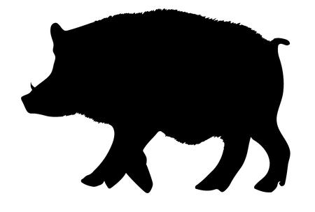Icona animale di cinghiale capodanno carta