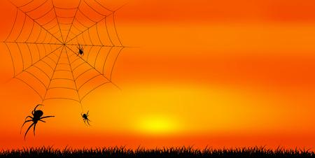 Halloween spider autumn background 写真素材 - 107519381