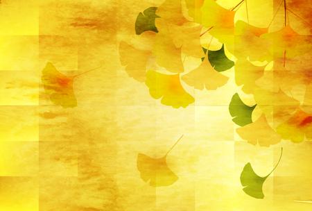 Autumn leaves Ginkgo biloba background