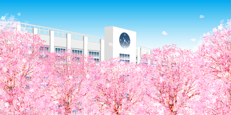 Cherry Blossom spring flower background 일러스트