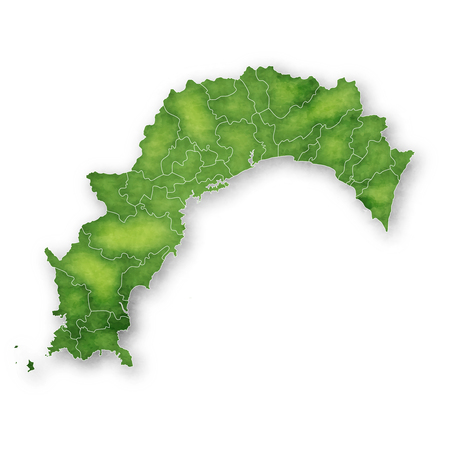 Kochi Map green icon