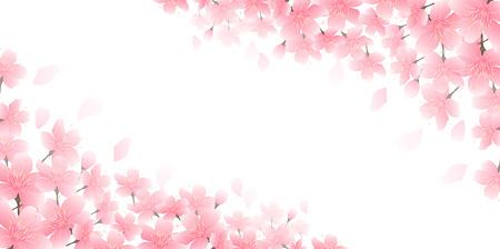 Sfondo di fiori di ciliegio in fiore di primavera Vettoriali