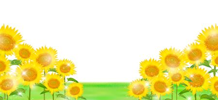 Sunflower Field Stock Illustrations Cliparts And Royalty Free Sunflower Field Vectors