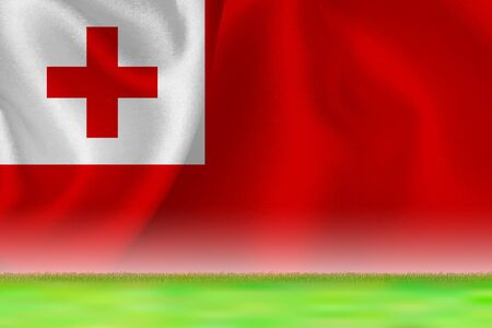 Tonga flag grand background