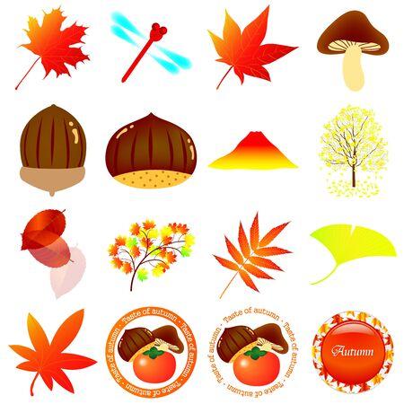 Autumn Autumn leaves mushroom icon