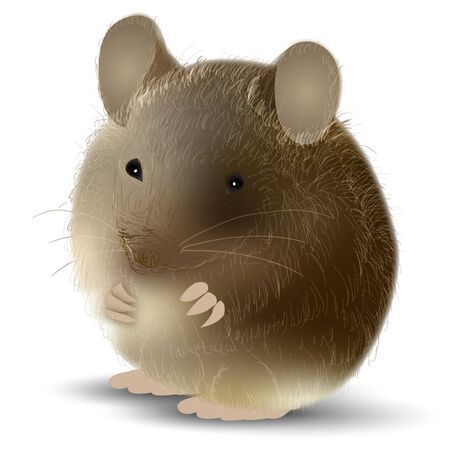 mouse New years card Animal icon
