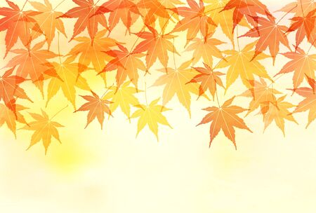 Autumn leaves maple autumn background Ilustracja