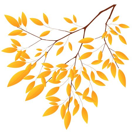 Autumn leaves autumn maple leaves icon Foto de archivo - 138252195