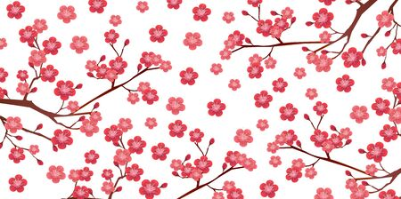 Plum blossom spring flower background