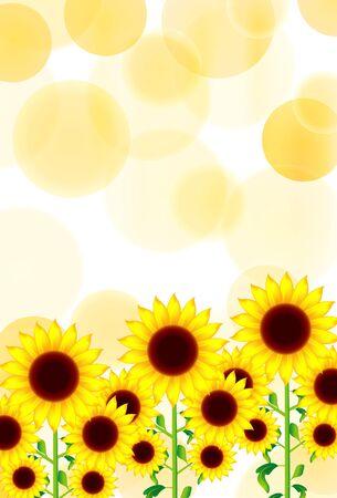 Sunflower summer greeting yellow background