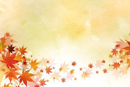 Feuilles d'automne fond d'automne érable