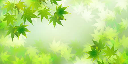 Fresh green maple Summer greeting card background