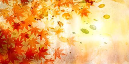 Autumn leaves maple autumn background