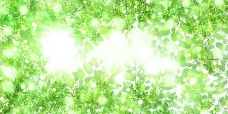 Fresh green leaves spring background