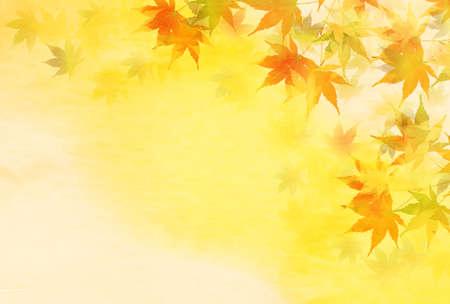 Autumn leaves maple autumn background 矢量图片