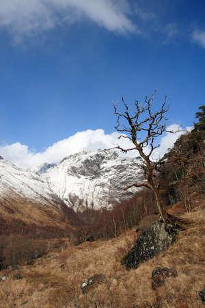glen: Glen Nevis in winter.
