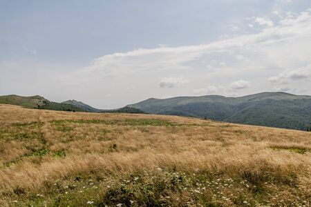 Road from Widelki to Tarnica through Bukowe Berdo in the Bieszczady Mountains in Poland