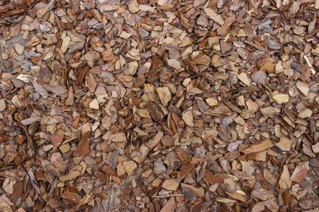 bark mulch: Wood mulch of pine bark brown