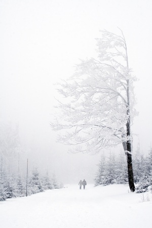 Couple on winter path surrounded by trees in polish mountains Beskidy  Winter landscape  photo